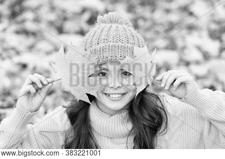 Cute Smile Of Autumn. Happy Girl Play With Yellow Leaves. Little Child Smile On Autumn Day. Healthy