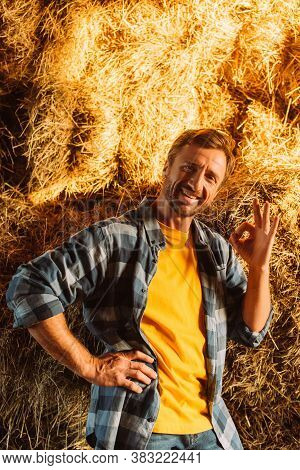 Rancher In Plaid Shirt Showing Okay Gesture While Looking At Camera Near Hay Stack