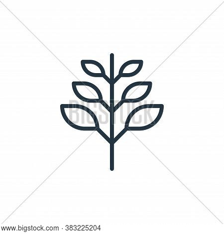 plant icon isolated on white background from spring collection. plant icon trendy and modern plant s