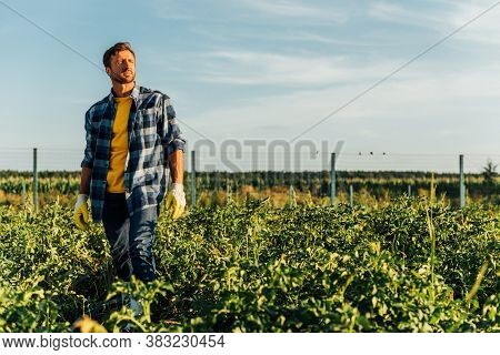 Rancher In Plaid Shirt And Work Gloves Looking Away While Standing In Field Against Cloudy Sky