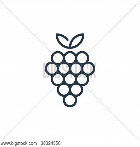grapes icon isolated on white background from education collection. grapes icon trendy and modern gr