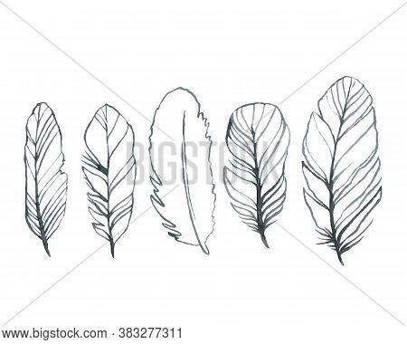 Bird Feathers, Set Black Gloomy Watercolor Hand Drawing