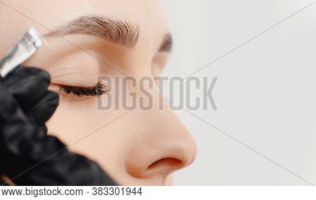 Correction And Tinting Eyebrows, Master Applies Brush To Woman Marking On Brow