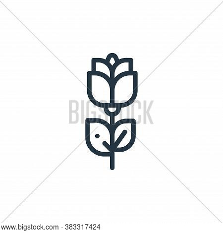 rose icon isolated on white background from magic collection. rose icon trendy and modern rose symbo