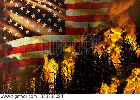 Forest Fire Natural Disaster Concept - Burning Fire In The Trees On Usa Flag Background - 3d Illustr