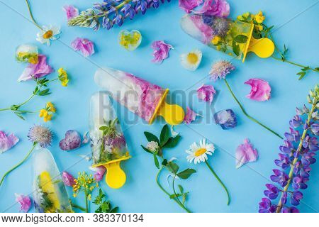 Floral Ice Pops. Hello Summer Concept. Frozen Popsicles And Ice Cubes Made Of Colorful Wildflowers O