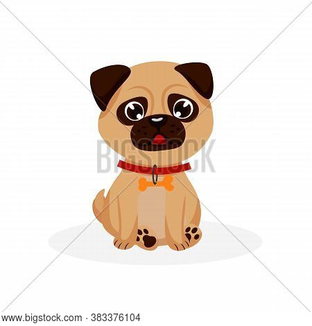 Pug Puppy. Isolated Purebred Pug Dog Puppy Icon. Cute Doggy Pet Animal Cartoon Character With Collar