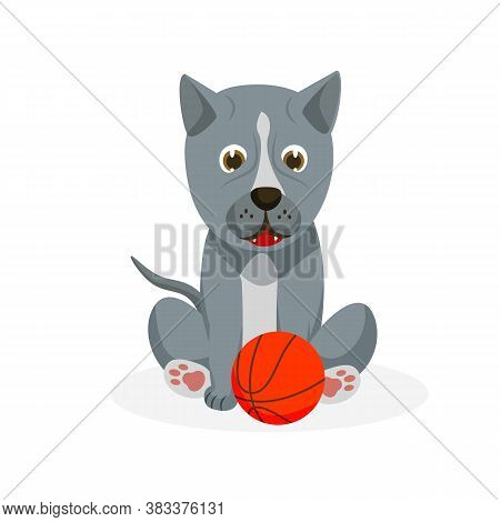 Pit Bull Puppy. Isolated Playful Purebred Pit Bull Dog Puppy Icon. Cute Doggy Pet Animal Cartoon Cha