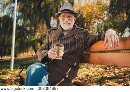 Photo Of Positive Old Man Rest Relax October Fall Weekend Park Pause Sit Bench Enjoy Aromatic Takeaw