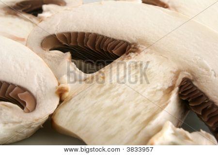 Closed-Cup Mushrooms