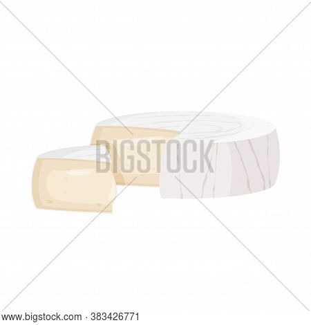 Brie Cheese Vector Illustration. Realistic Food Image Isolated On White Background.