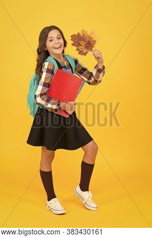 Beginning Of Autumn Semester. Back To Studying. Little Schoolgirl With School Books Backpack And Aut