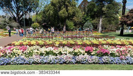 Toowoomba, Australia - September 20, 2018: Visitors Enjoying The Beautiful Floral Garden Displays In