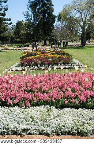 Toowoomba, Australia - September 20, 2018: Beautiful Gardens And Floral Display In Queens Park Durin