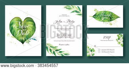 Wedding Invitation, Save The Date, Thank You, Rsvp Card Design Template. Silver Dollar, Olive Leaves