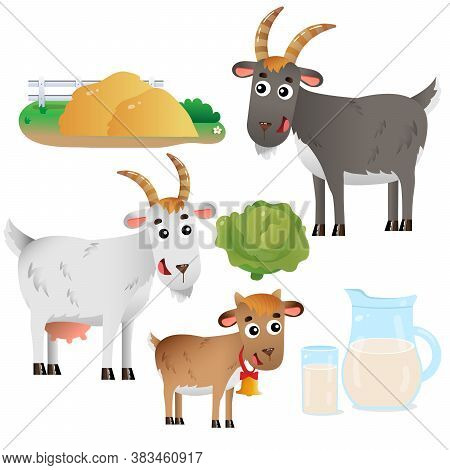 Color Images Of Goat Mum And Goat Dad With Kid On White Background. Farm Animals. Vector  Set For Ki