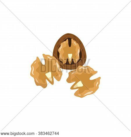 Cartoon Walnuts In And Out Of Shell - Isolated Food Illustration