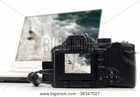 Image transfer