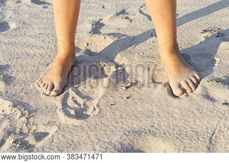 Close-up Of Children Legs On Sand Beach. Young Girl Legs On Baltic Sea Beach. Teenager Legs In Sand.