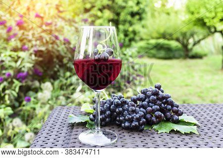 Grape Fruits In A Glass Of Dark Purplish Red Wine And Bunches Of Fresh Deep Black Berry Ripe Grapes