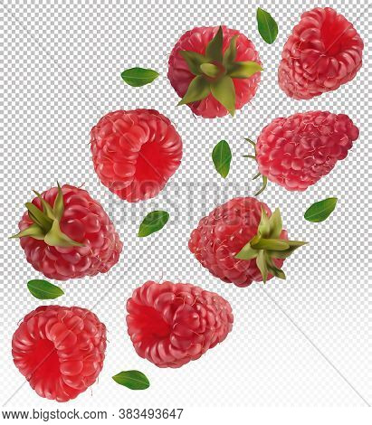 Raspberry Falling From Different Angles. Flying Raspberry With Green Leaf On Transparent Background.