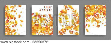 Yellow Orange Red Dry Autumn Leaves Flying Organic Backdrops. Falling Dry Foliage Brochure Covers, C