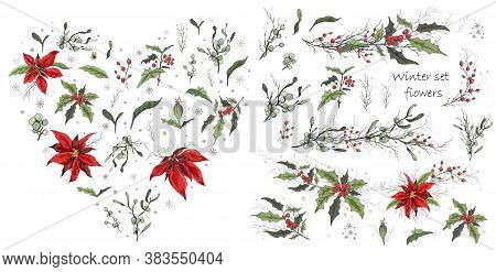 Hand Drawn Set, Isolated Flowers On White Background. Realistic, Botanical Doodles. Modern Flowers (