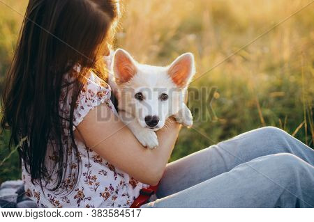 Happy Woman Hugging Cute White Puppy In Summer Meadow In Sunset Light. Authentic Beautiful Moment. S