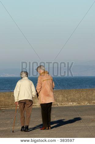 Elderly Females