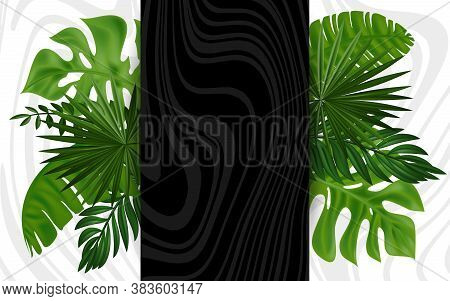 Tropical Design. Summer Exotic Flora. Foliage. Trendy Background With Tropical Plant And Leaf. Summe