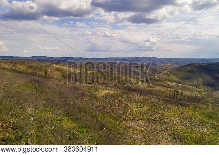 Vila De Rei Drone Aerial Landscape View Of Beautiful Nature Landscape With Green And Yellow Trees, I