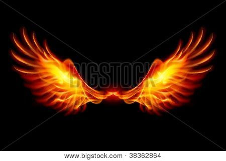 Burning Wings
