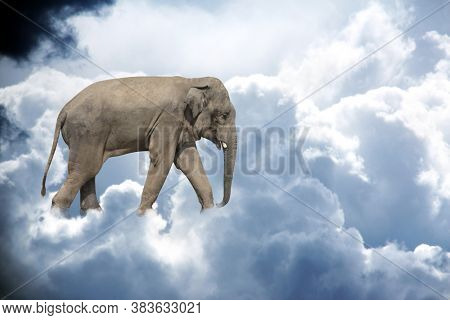 Horizontal banner with elephant above stormy cumulonimbus. Cute elephant in the sky. Fantastic scene with an elephant walking on the clouds. Mock up template. Copy space for text