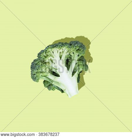 Half The Head Of Broccoli Cut In Half On A Green Background With Hard Light. Square Creative Layout.