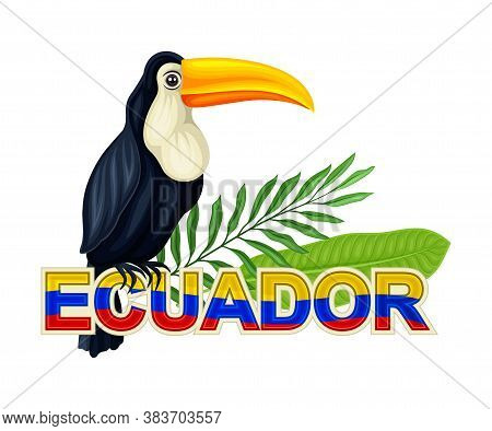 Toucan Bird With Palm Leaves As Ecuador Attribute Vector Illustration
