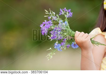 Sweet Little Girl Holding  Bouquet Of Summer Purple Flowers In Hands. Close Up Photo. Copy Space