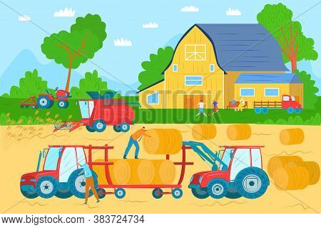 Agricultural Machinery, Vehicles And Farm Machines In Field Harvesting Vector Illustration. Tractors