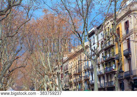 Trees And Houses Of La Rambla Street In Barcelona