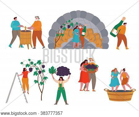 Concept Of Wine Production. Cartoon Small Man And Woman Worker Characters Gardening, Harvesting On V
