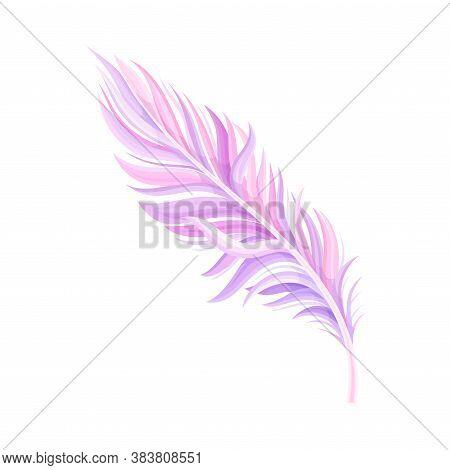 Purple Bird Feather With Nib As Avian Plumage Vector Illustration