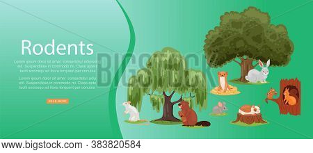 Rodents Inscription On Bright Banner, Set Cute Animal, Mammal, Little Funny Pets, Design Cartoon Sty