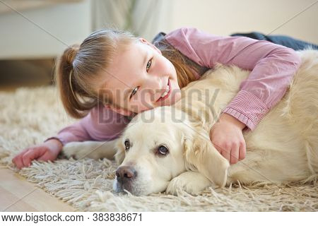 Satisfied child cuddles with golden retriever dog at home