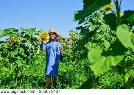 Beautiful Girl Wear Straw Summer Hat In Field. Pretty Kid With Flower. Beauty Of Summer Nature. Litt
