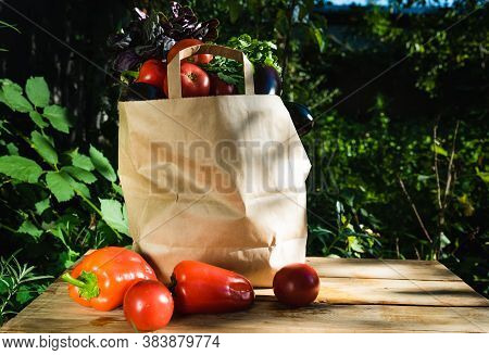 Paper Bag With Tomatoes, Eggplants And Herbs. Concept Of Biological, Bio Products, Bio Ecology, Grow
