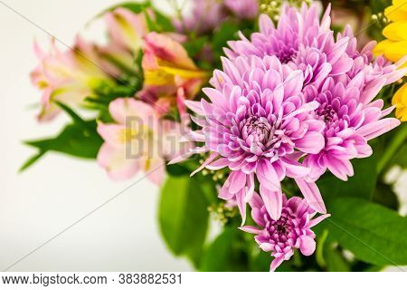 Beautiful Purple Dahlia Fowers Over A Bouquet Of Colorful Flowers With Copy Space For Your Text Or I