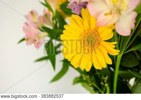 Beautiful Yellow Daisy Flower Over A Bouquet Of Colorful Flowers With Copy Space For Your Text Or Im