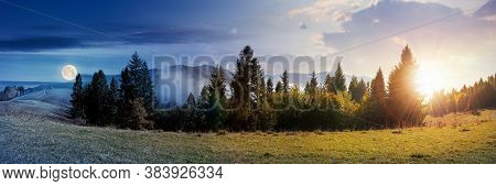 Day And Night Time Change Concept Of Foggy Autumn Panorama. Spruce Trees On The Meadow Beneath A Sun