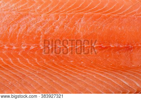 Raw Salmon Fillet Background. Fresh Chilled Boneless Salmon Meat Surface. Orange Fish Meat. Design E