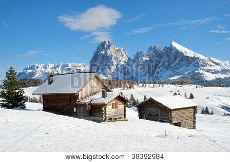 Chalets On The Alpe Di Siusi