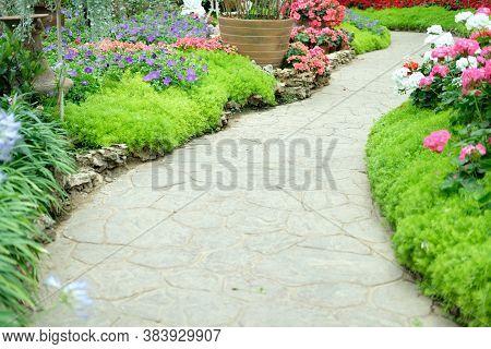 Walkway Pathway In Flower Garden Park
